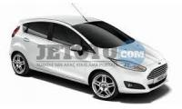 Ford Fiesta Adana Adana Havaalanı EMG CAR RENTAL